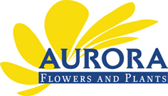 Aurora Flowers & Plants